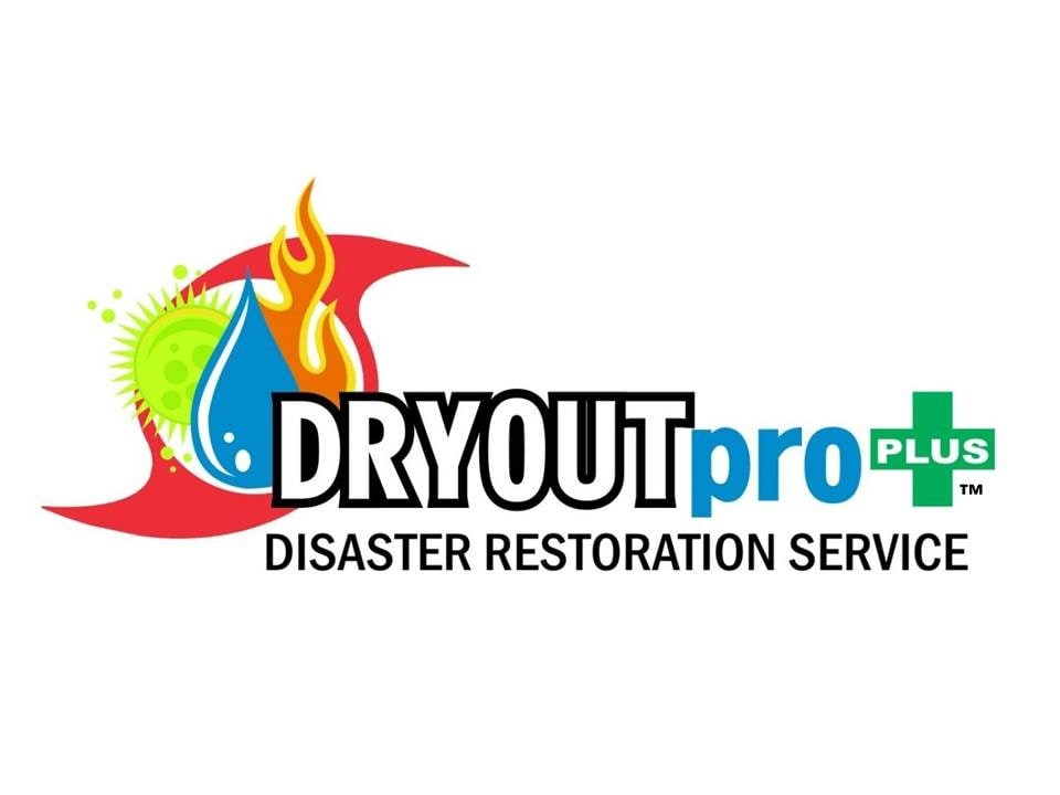 DRYOUTpro Plus Inc