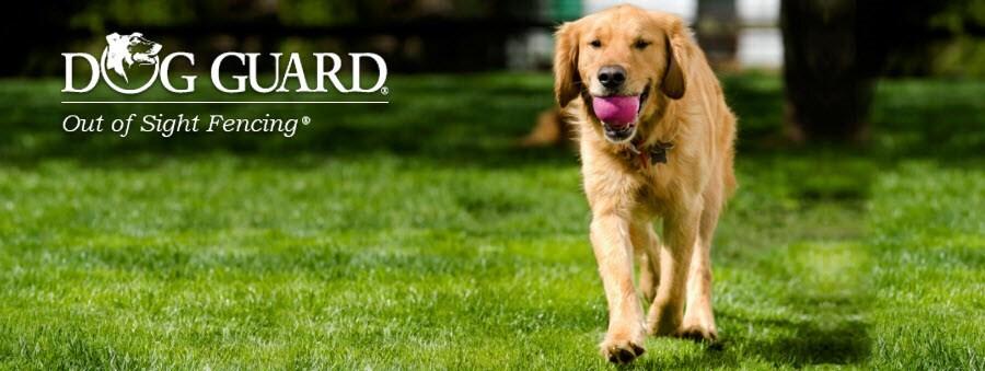 Dog Guard Pet Fencing
