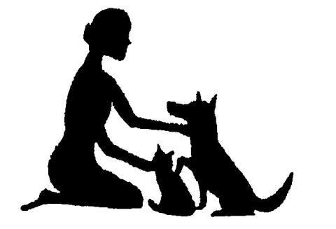 Gentle Care Animal Hospital PC