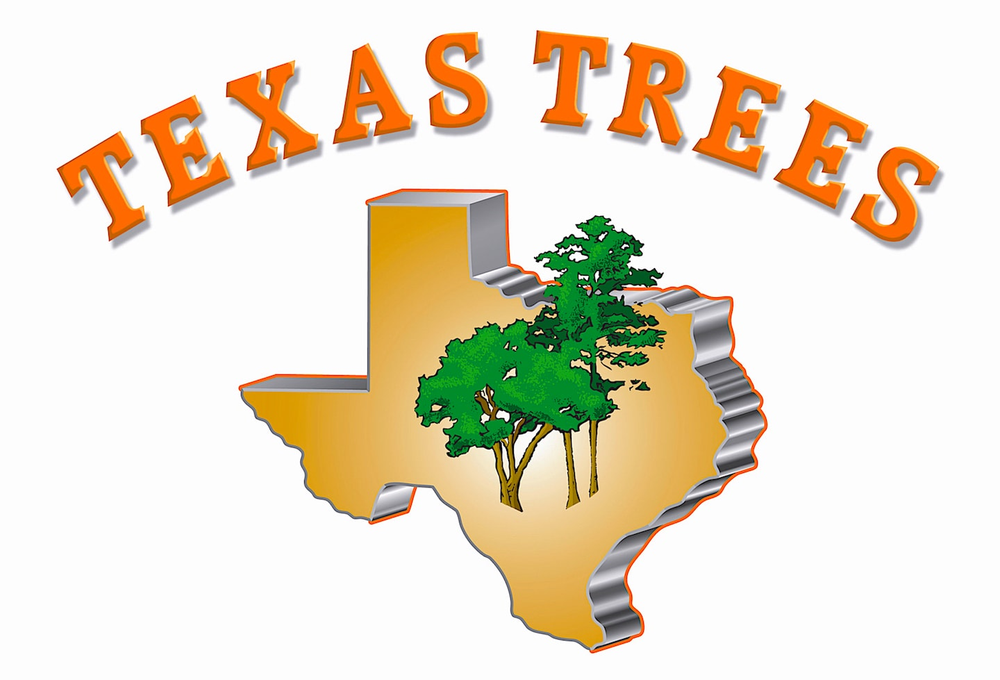 Texas Trees Reviews San Antonio Tx Angie S List