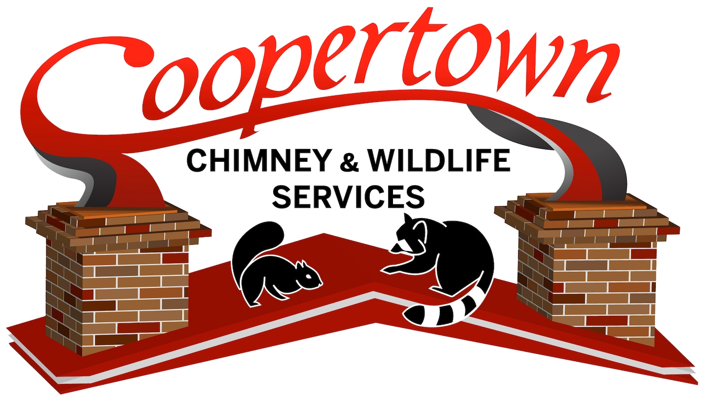 Coopertown Chimney & Wildlife Services