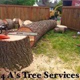 4 A's Tree Service