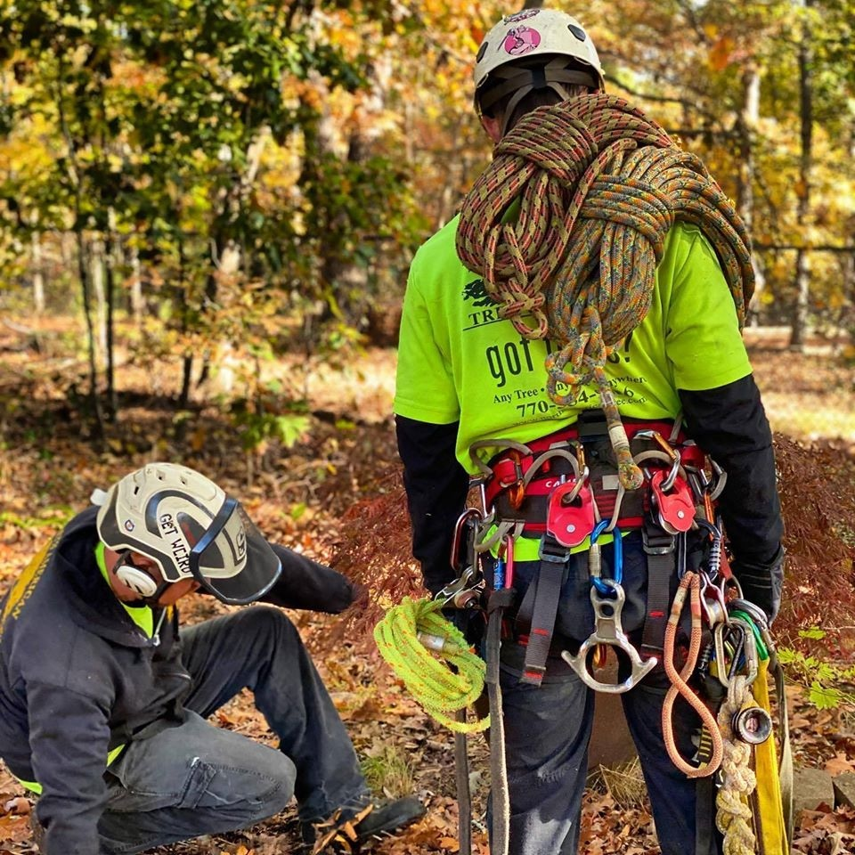 North American Tree Service Inc
