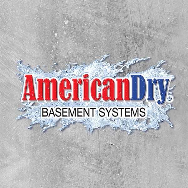 American Dry Basement Systems/Mold Pro Inc