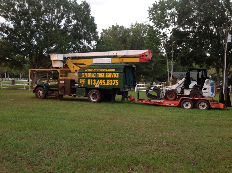 EXPERIENCE TREE SERVICE CORPORATION
