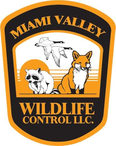 Miami Valley Wildlife Control LLC