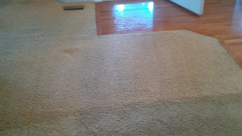 R & L Carpet, Upholstery & Restoration