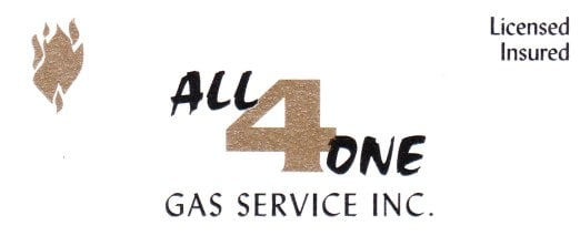 ALL 4 ONE GAS SVC INC
