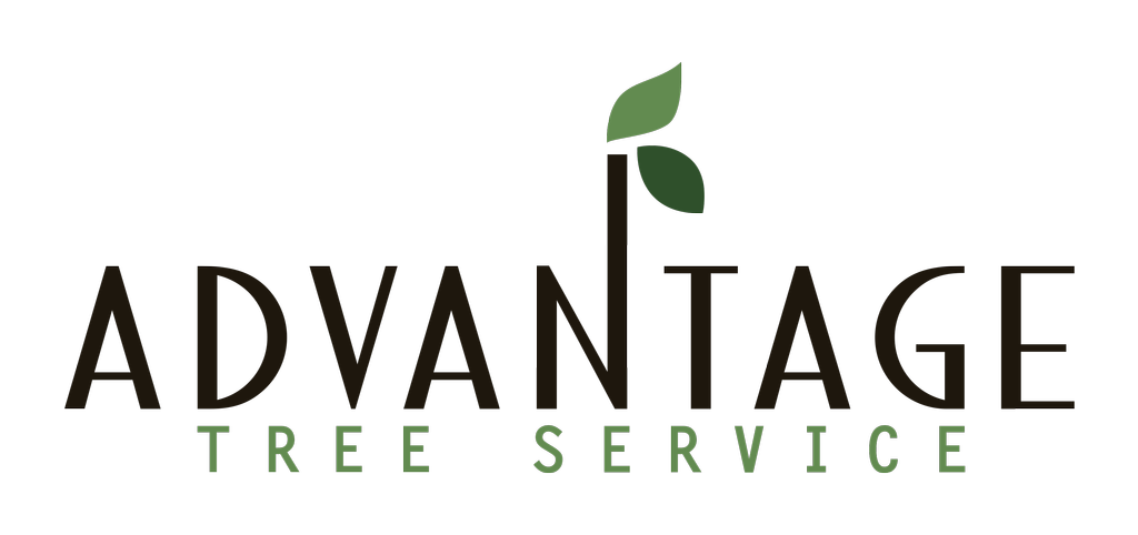 Advantage Tree Services LLC