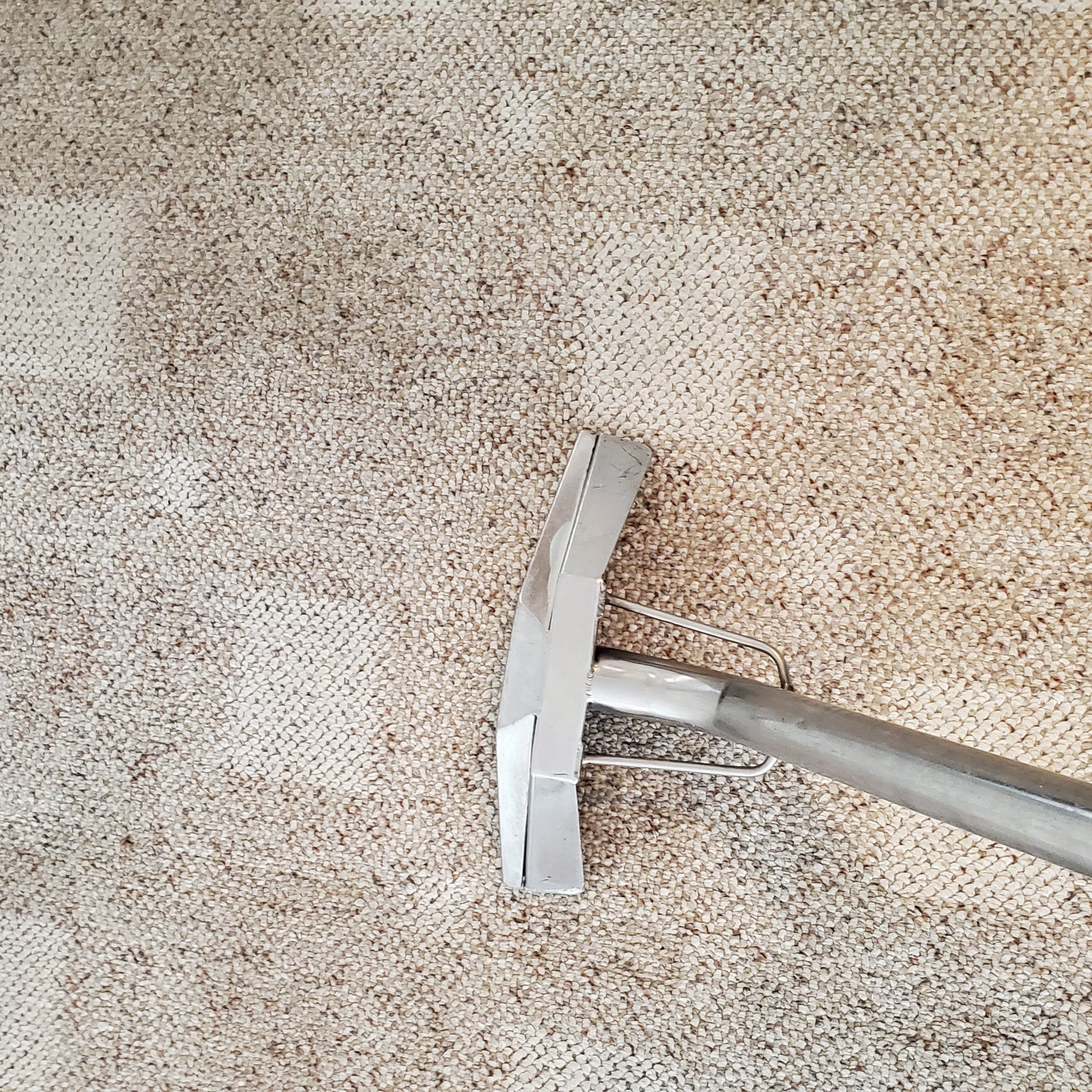 Brighter Tomorrows Carpet Cleaning