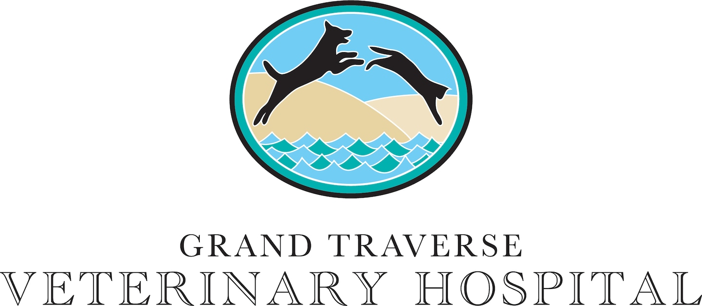 Grand Traverse Veterinary Hospital