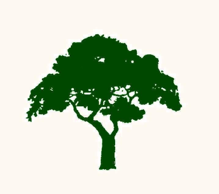 Environmental Design & Landscaping LLC