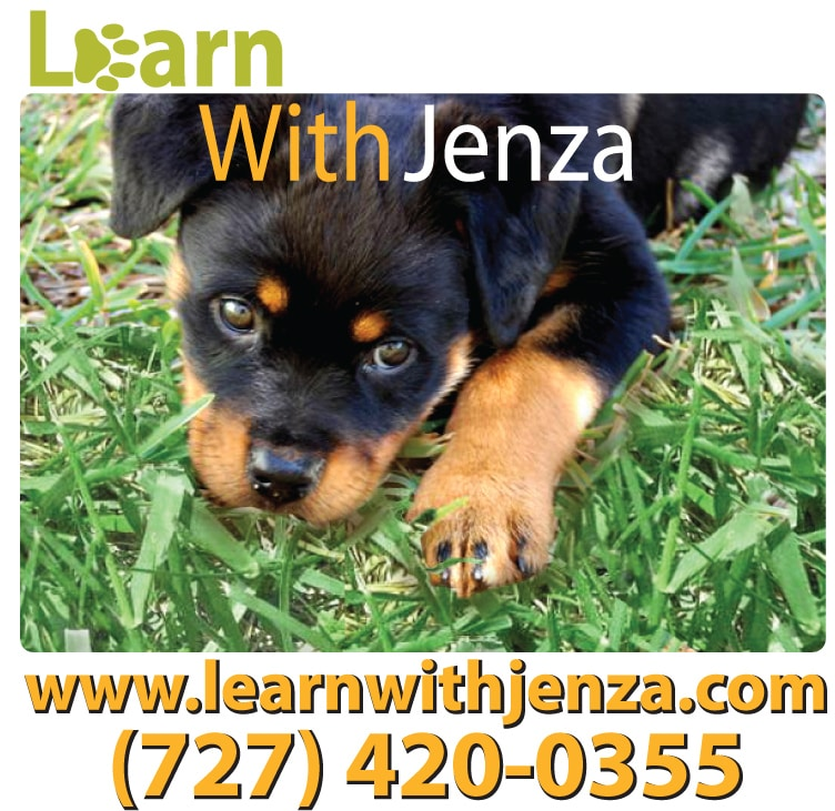Learn with Jenza
