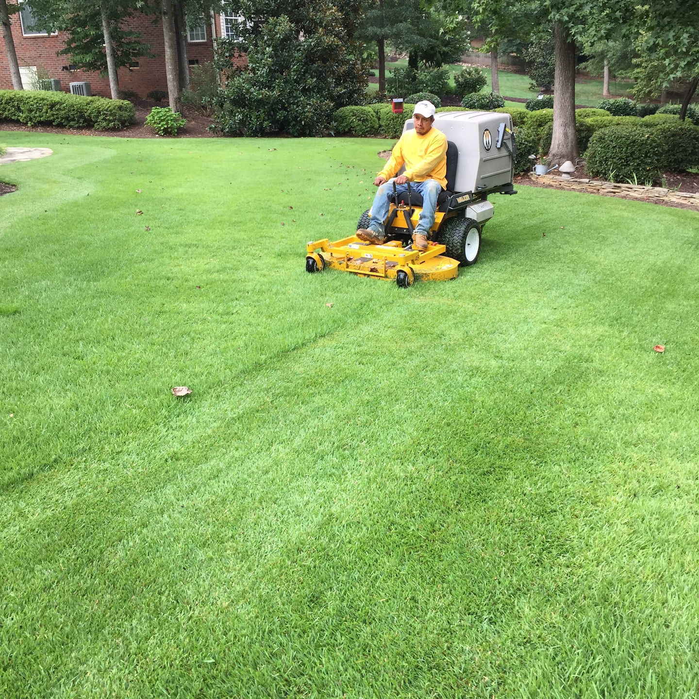 Grass Barber Lawn Management