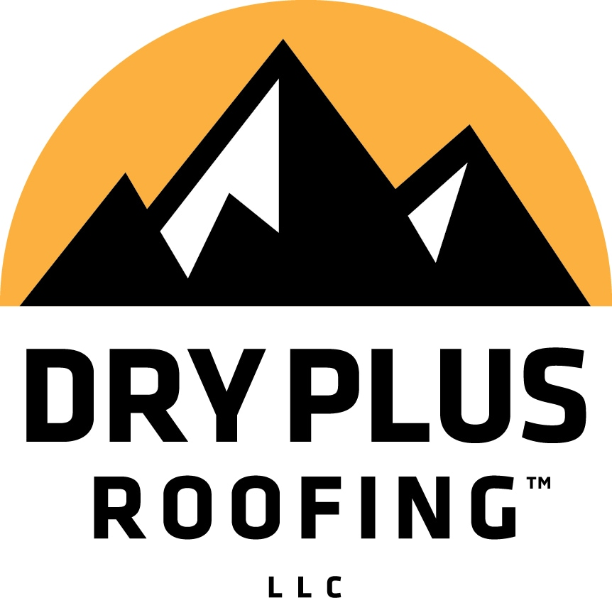 Dry Plus Roofing