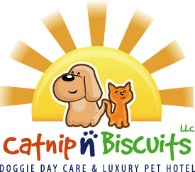 Catnip n Biscuits LLC