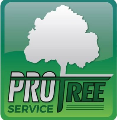 Pro Tree Svc