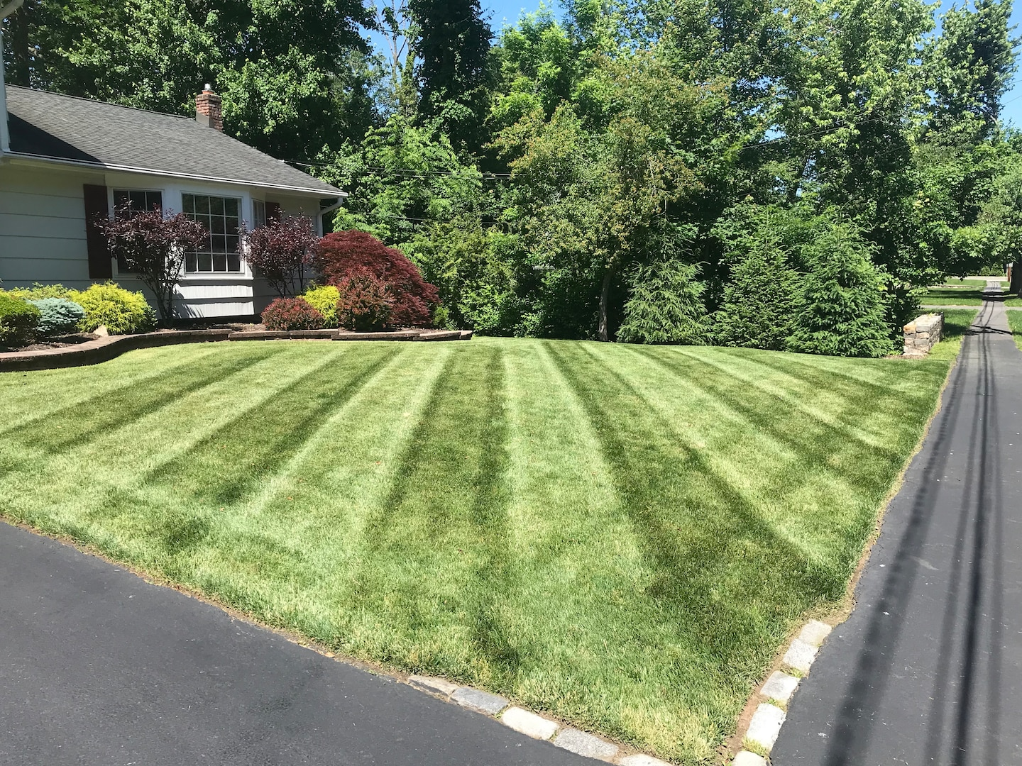 Top 10 Best Lawn Care Services In West Orange Nj Angie S List