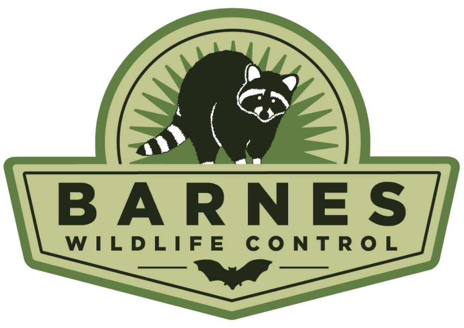 Barnes Wildlife Control LLC