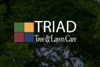 Triad Tree and Lawncare