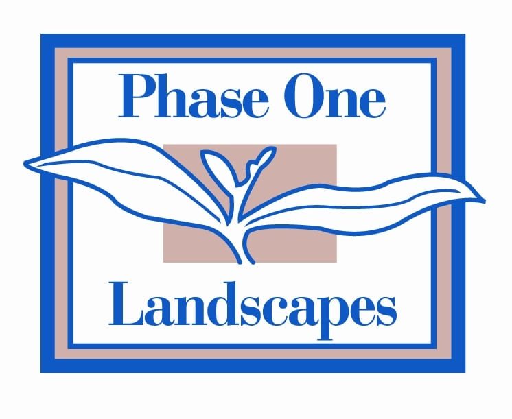 Phase One Landscapes