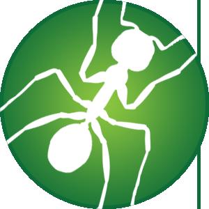 Pointe Pest Control | WA & ID