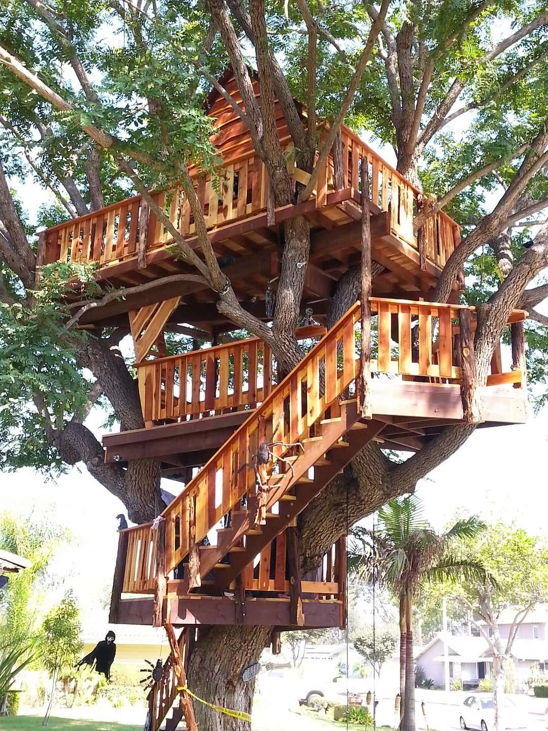 1treehouse