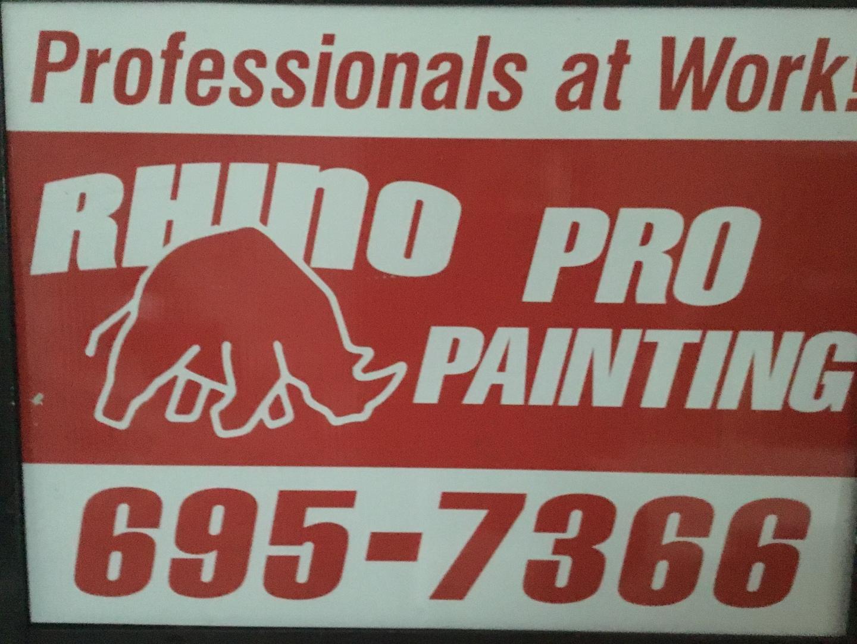 Rhino Pro Painting