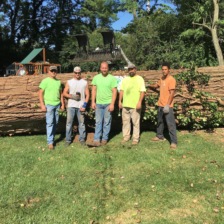 3n1 Tree Service