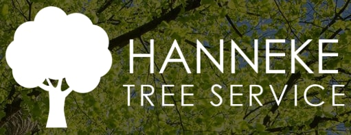 Hanneke Tree Care and Landscaping