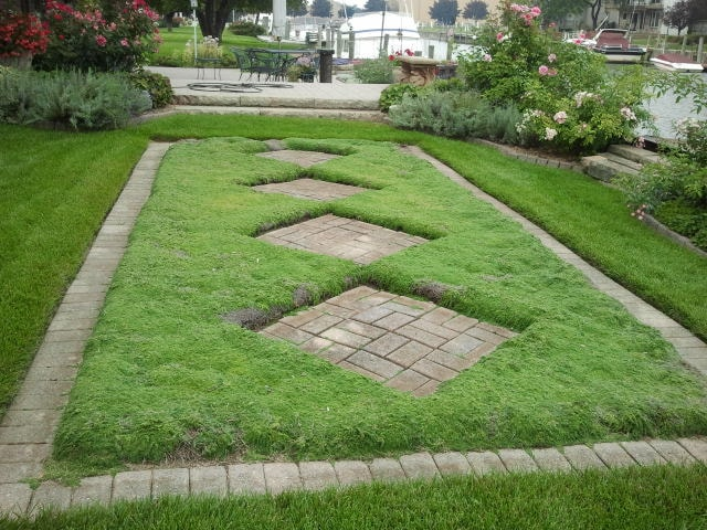 Herbal Thymes & Gatherings