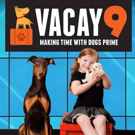 Vacay 9 Dog Training