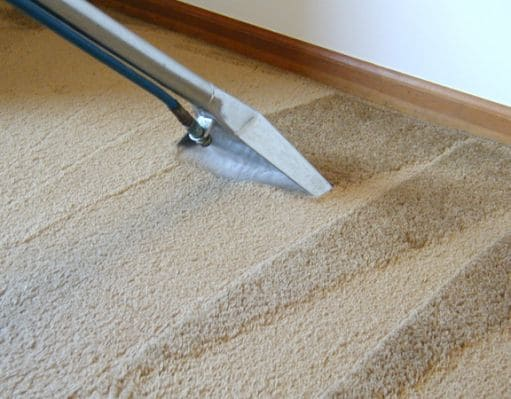 Clean Co Fresh Carpet Cleaning