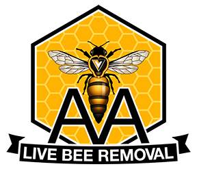 AA Live Bee Removal