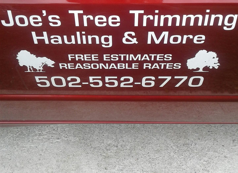 Joe's Tree Trimming Hauling & More