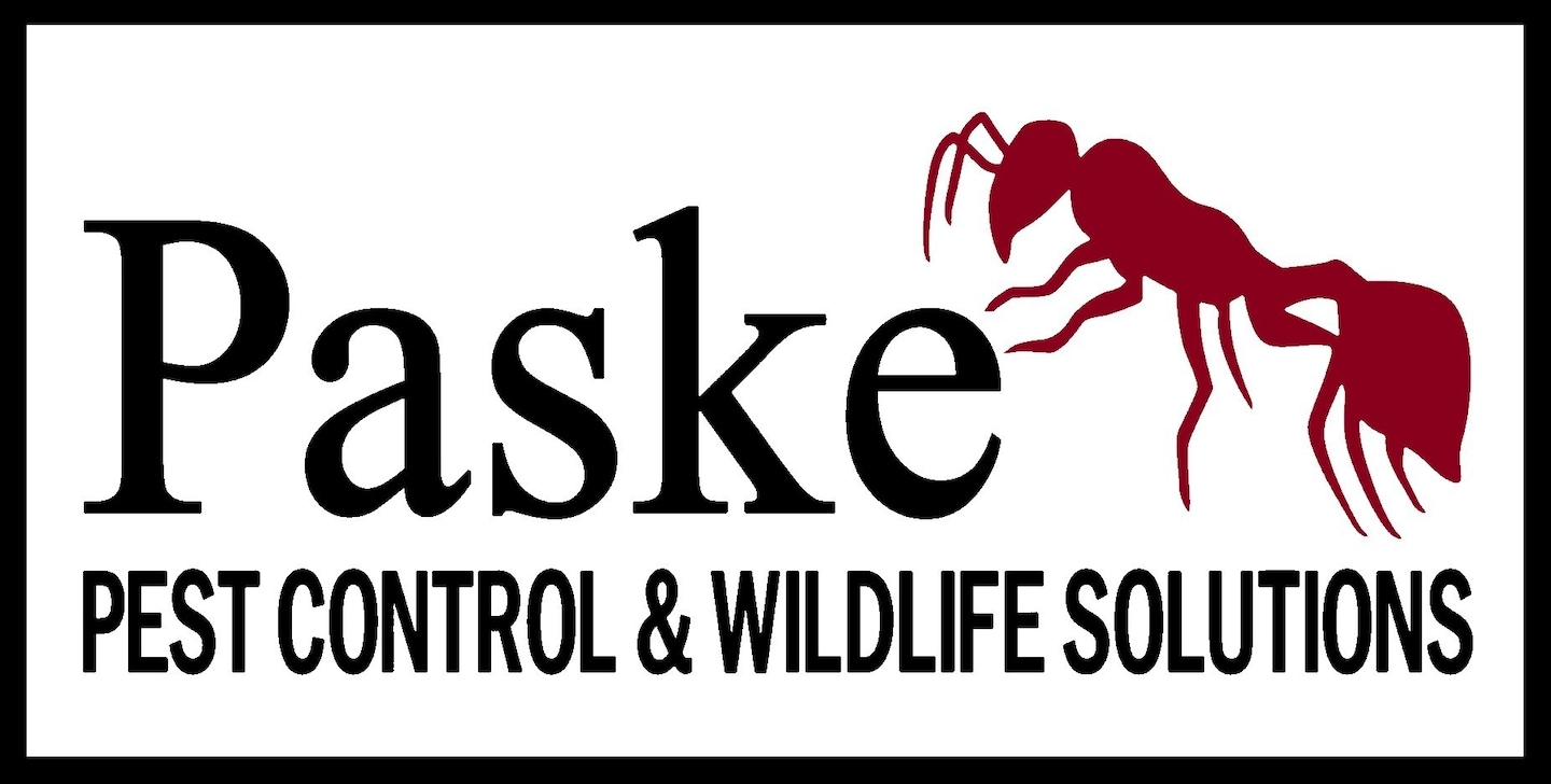 Paske Pest Control & Wildlife Solutions