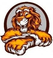 Junk Tigers Hauling
