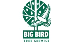 BIG BIRD TREE SERVICE
