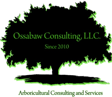 Ossabaw Consulting, LLC
