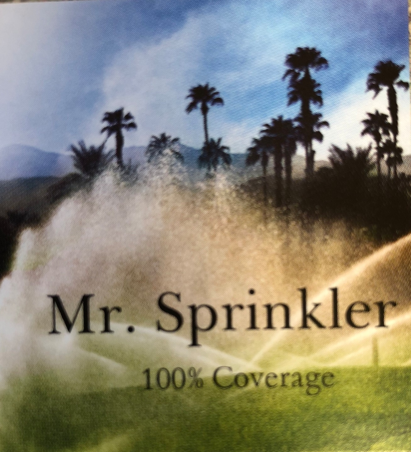 Mr. Sprinkler
