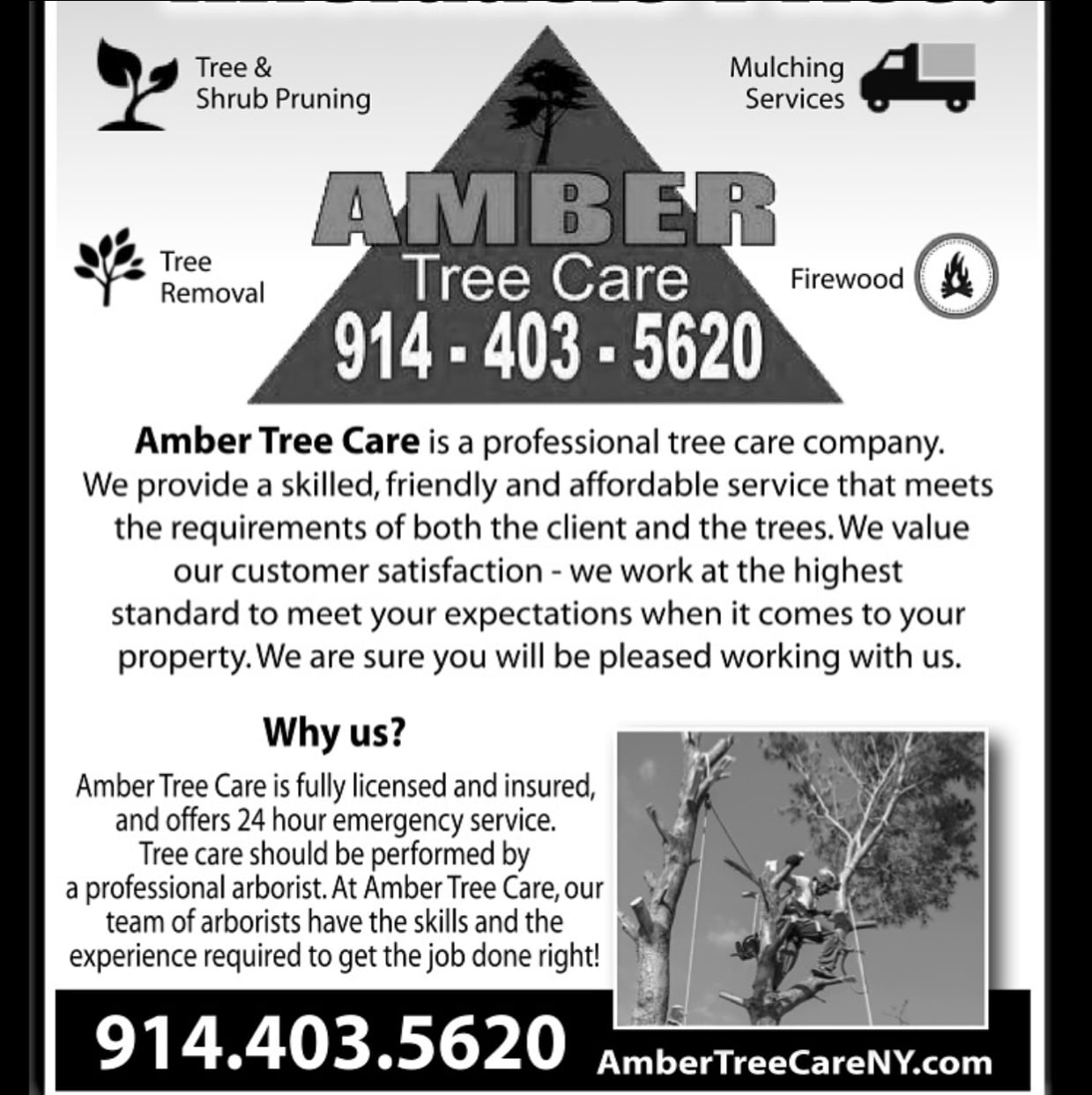 Amber Tree Care LLC