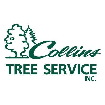 Collins Tree Service Inc