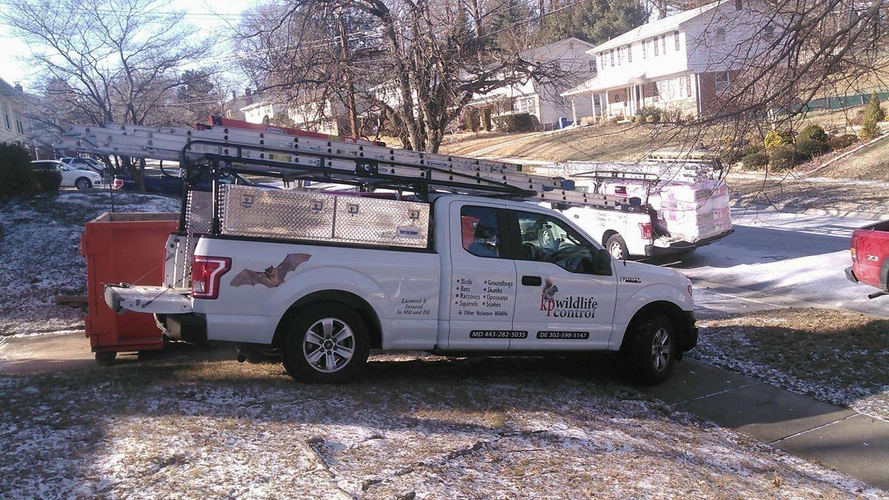 KP Wildlife Control and Repairs LLC