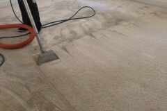 Discount Carpet & Upholstery Cleaning