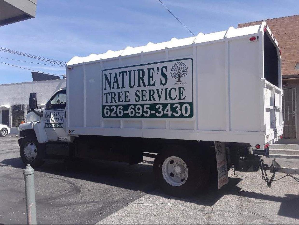 Nature's Tree Service