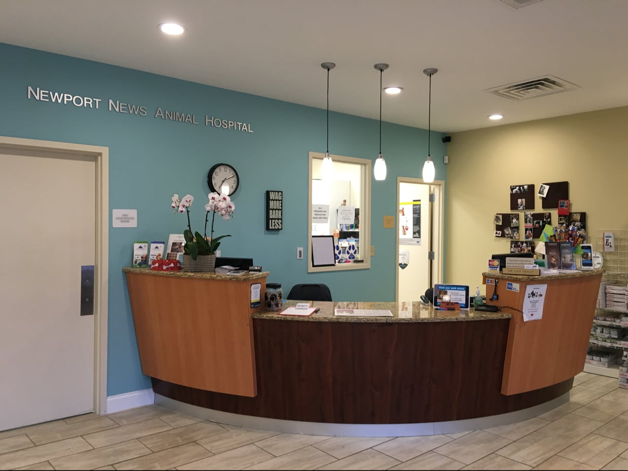 Newport News Animal Hospital