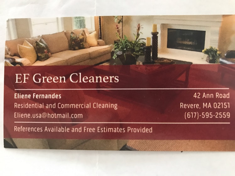 EF Green Cleaners