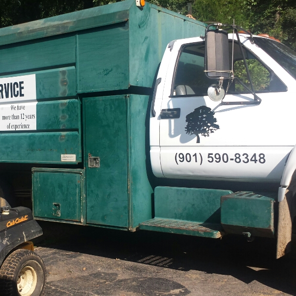 Jose Perez Tree Service