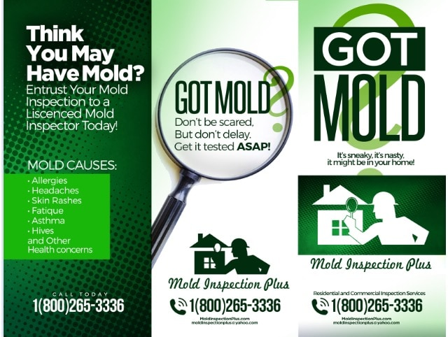 Mold Inspection Plus