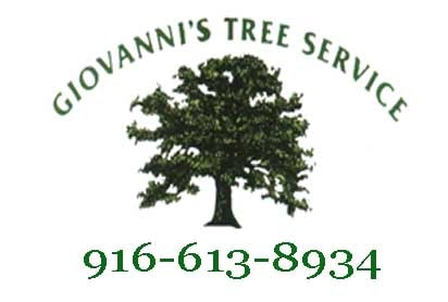 Giovanni's Tree Service